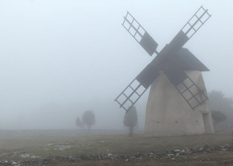 _MG_9622-Misty morning