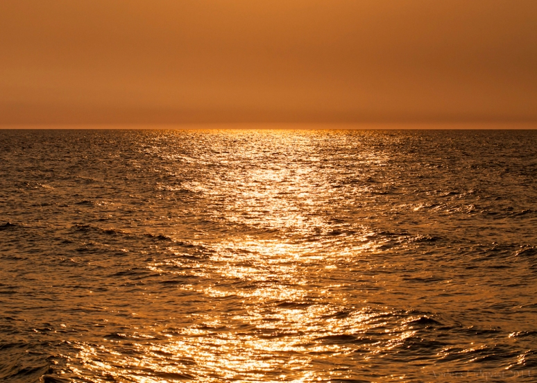 _MG_9895 Straight to the horizon
